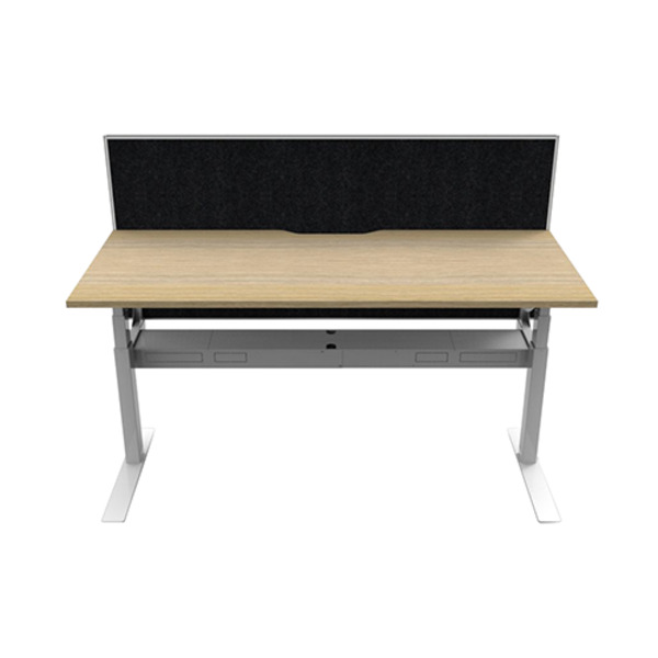 Rapid Paramount Electric Single Height Adjustable Desk with Screen