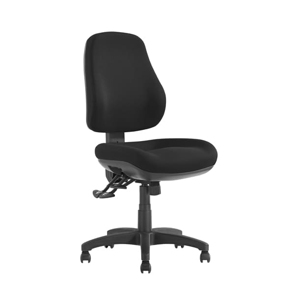 Newton Posture Care Ergonomic Office Chair Optional Arms