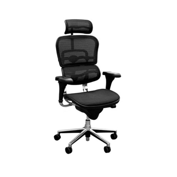 Ergohuman V1 Deluxe Mesh Executive Office Chair with Headrest