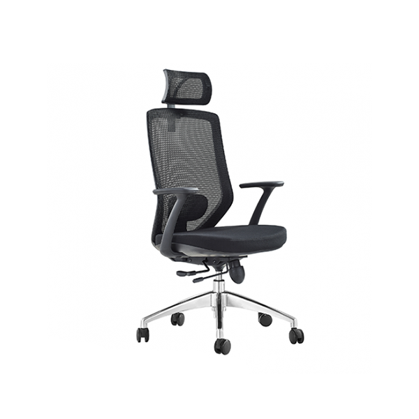Orland Mesh Back Executive Chair with Head Rest