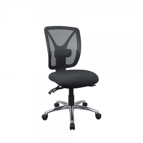 ErgoSit Mesh Posture Correct Fully Ergonomic Office Chair 160Kg Rated Optional Arms