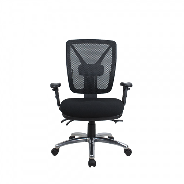 ErgoSit Therapeutic Posture Correct Mesh back Fully Ergonomic Office Chair 160Kg Rated Optional Arms