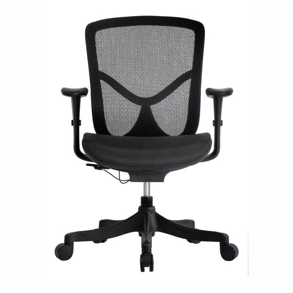 Brant Comfort Mesh Fully Ergonomic Office Chair By Ergohuman Chairs