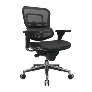 Ergohuman V1 Deluxe Mesh Executive Office Chair No Head Rest