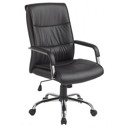 Executive Padded Office Chair