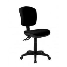 Ecotech Medium Back Ergonomic Office Chair