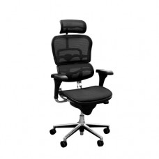 Ergohuman V1, Mesh Office Chair with Headrest