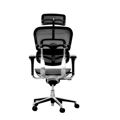 Ergohuman V1 Mesh fice Chair with Headrest