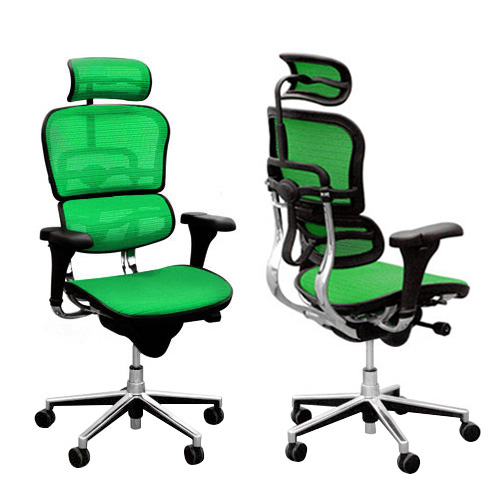 f24677c966e Ergohuman V1 Deluxe Mesh Executive Office Chair with Headrest