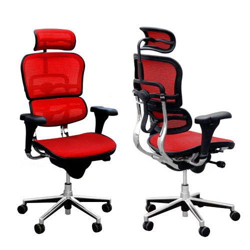Ergohuman V1 Deluxe Mesh Executive Office Chair with Headrest For ...