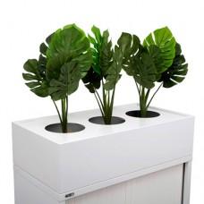 GO Planter Box