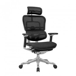 Magnificent Ergohuman Mesh Chairs Raynor Comfort 100 Eurotech Ebay Ibusinesslaw Wood Chair Design Ideas Ibusinesslaworg