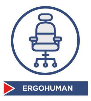 Ergohuman Mesh Chairs